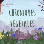 chroniques vegetales